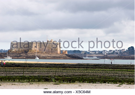 Oyster beds and the Château du Taureau in the Bay of Morlaix, Finistere, Brittany, France, Europe - Stock Photo