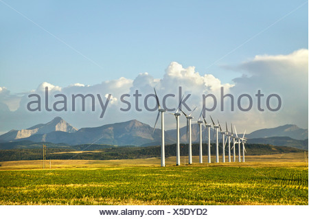 Wind turbines, Pincher Creek, Alberta, Canada - Stock Photo