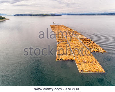 Tug towing a large float of logs off Northern Vancouver Island, looking towards Cormorant Island, Alert Bay and Johnstone Strait, British Columbia, Canada. - Stock Photo