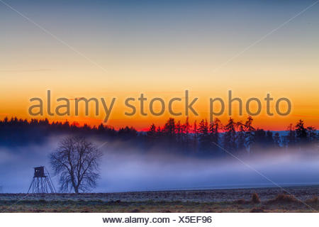 evening sunset in harz - Stock Photo