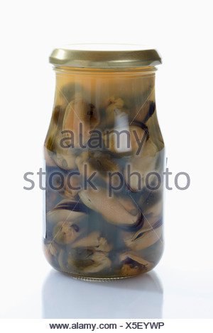 Preserved mussels in glass jar on white background - Stock Photo
