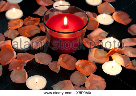 Rose petals and candles - Stock Photo