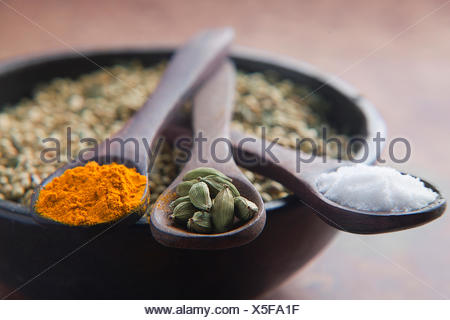 Close-up of Salt,Cardamom and Turmeric on wooden spoons - Stock Photo