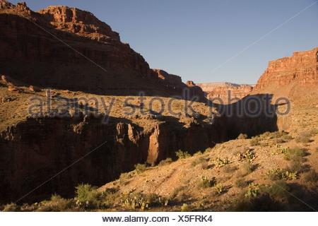 Sunrise illuminates the deep canyons and cliffs of the Grand Canyon. - Stock Photo
