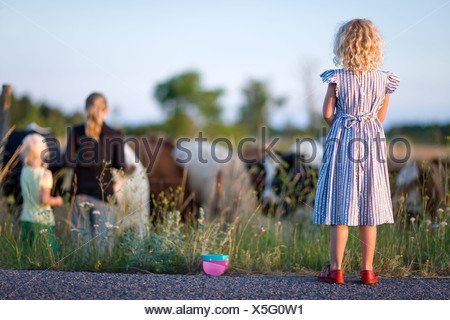 Three girls looking at cows on pasture - Stock Photo