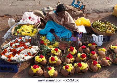Florist selling bouquets of coconuts as offerings, Chamundi Hill, Mysore, Karnataka, South India, India, South Asia, Asia - Stock Photo