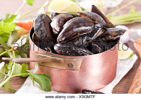 Mussels in Casserole - Stock Photo