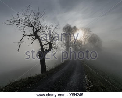 The sun and fog in Trachselwald - Stock Photo