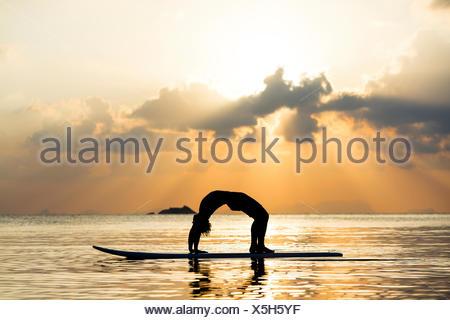 Thailand, man doing yoga on paddleboard at sunset, bridge position - Stock Photo