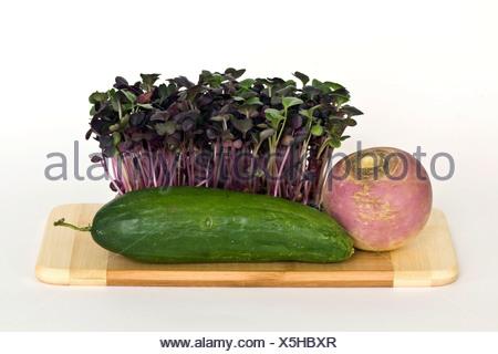 Radish sprouts, mini cucumber and round radish - Stock Photo