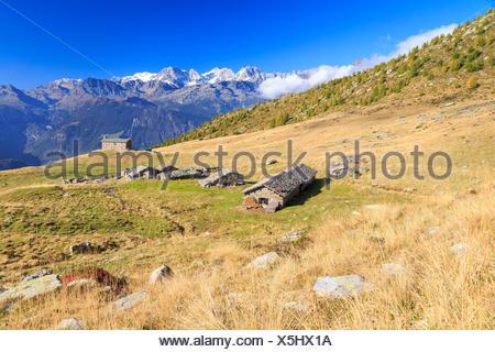 Alpine huts framed by snowy peaks of Bernina Group Arcoglio Alp Val Torreggio Malenco Valley Valtellina Lombardy Italy Europe - Stock Photo