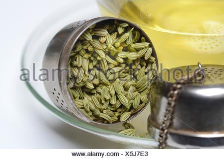 Fencheltee in Tasse und Fenchelsamen in Loeffel, Fenchel-Tee - Stock Photo