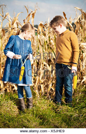 Girl and boy standing in maize field - Stock Photo