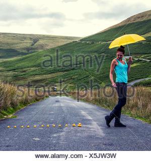 Row of plastic ducks following woman with umbrella - Stock Photo