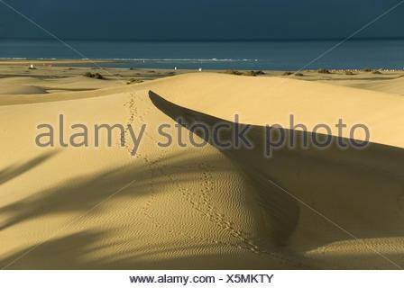 Dunes - Stock Photo