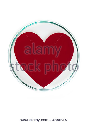 Heart research conceptual image - Stock Photo
