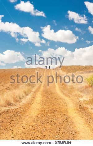 Way of St. James, two pilgrims afield near Calzadilla de la Cueza, Spain, Castile and Leon, Palencia, Calzadilla de la Cueza - Stock Photo