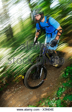 Mountain Biker rides Fisherman's Trail. Lower Seymour Conservation Reserve, Seymour Mountain, North Vancouver, British Columbia, - Stock Photo