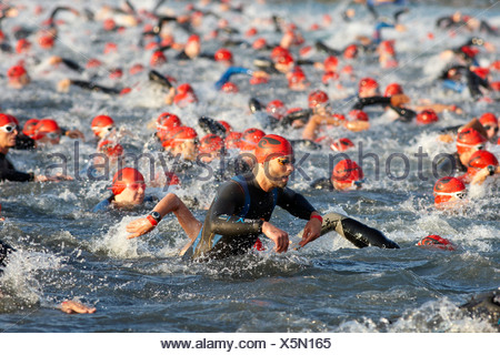 Triathlon, swimming competition, Ironman Germany, Frankfurt, Hesse, Germany, Europe - Stock Photo