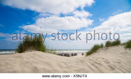 Sand Dunes on Norderney Island, Germany - Stock Photo