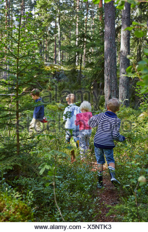 Four young children wandering in forest - Stock Photo