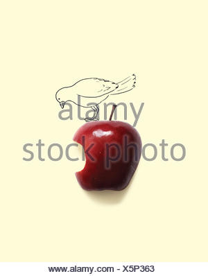 Conceptual bird on apple with a bite missing - Stock Photo