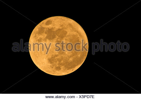 full moon in a cloudless sky - Stock Photo