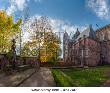 Germany, Europe, Rheinland Pfalz, Worms, cathedral, church, monastery, forest, wood, trees, autumn, - Stock Photo