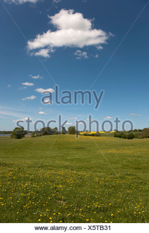Spring in the Brodersby municipality, Angeln region, eastern down, Schleswig-Holstein, Germany, Europe - Stock Photo
