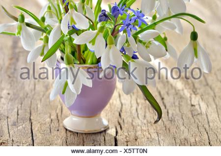 Bunch of Crocus and Snowdrops in a glass vase on old wooden table. - Stock Photo