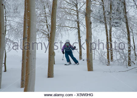 A teen girl downhill skiing through the trees on a stormy day. - Stock Photo