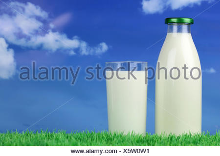 Frische Milch in der Flasche und im Glas auf einer Wiese mit Textfreiraum - Stock Photo
