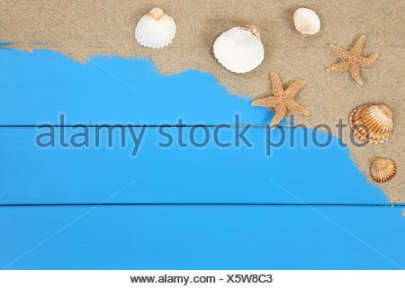 Muscheln und Seesterne im Sand am Strand im Urlaub mit Textfreiraum - Stock Photo