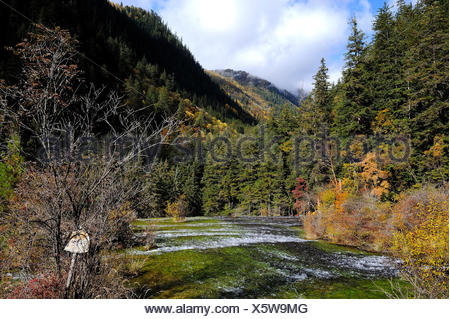 View of a freshwater stream from the walking path in autumn in JiuZhaiGou National Park in Sichuan Province, P.R. China. - Stock Photo