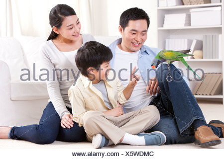 Family playing with a pet parrot - Stock Photo