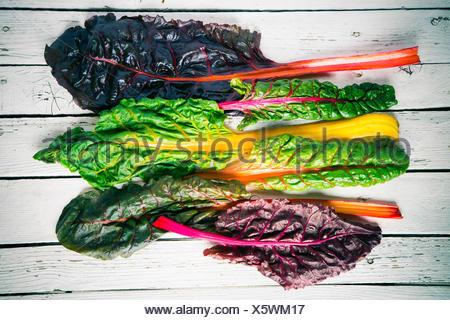Row of fresh chard leaves on white wood - Stock Photo