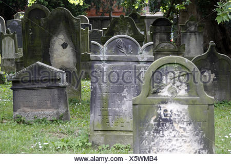 jewish cemetery in hameln - Stock Photo