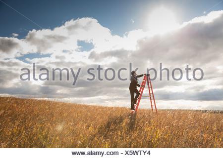 Businessman climbing step ladder in field - Stock Photo