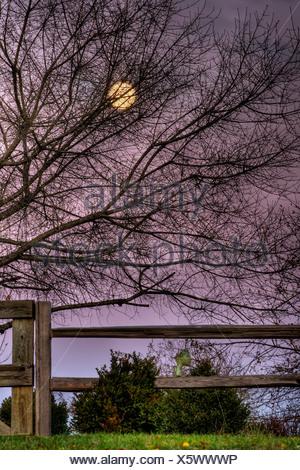 Moon rise over hill at Inn at Cedar Falls - Stock Photo