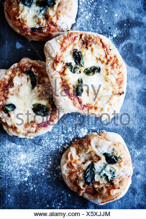 Tray of pizzas with herbs - Stock Photo