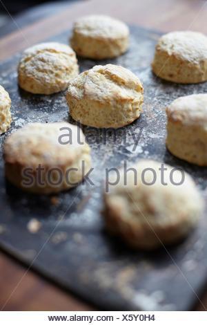 Close up of freshly baked scones on baking tray - Stock Photo