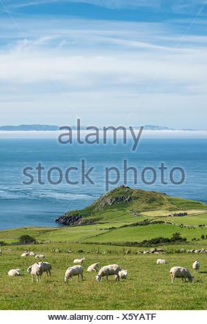 Northern Ireland, County Antrim, View from Torr Head to scotish coast - Stock Photo
