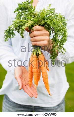 Midsection of woman holding bunch of carrots - Stock Photo