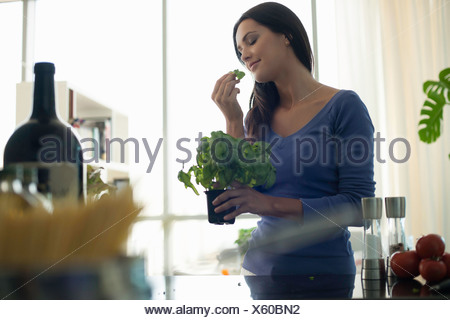 Young woman smelling basil plant in kitchen - Stock Photo
