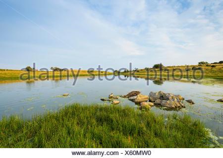 Inland Lake in Summer, Fyns Hoved, Hindsholm, Kerteminde, Funen, Baltic Sea, Denmark - Stock Photo