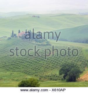 Toskana Haus im Nebel - Tuscany house in fog 12 - Stock Photo