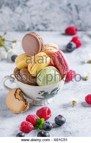 Variety of colorful french sweet dessert macarons with different fillings served in vintage tea cup with spring flowers and fresh berries over gray te - Stock Photo