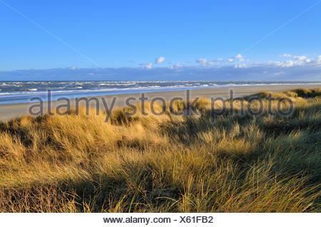 Langeoog Island, dunes on the north beach, choppy Sea, North Sea, Lower Saxony, Germany - Stock Photo