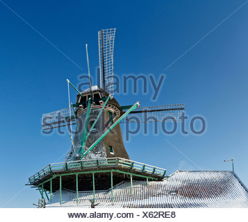 Netherlands, Holland, Europe, Zaandam, North Holland, windmill, winter, snow, ice, frost, Cat - Stock Photo