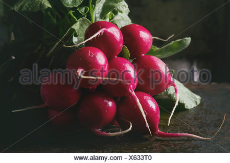 Fresh organic ripe young radish bundle with leaves over dark texture background. Close up. Selective focus, toned image - Stock Photo